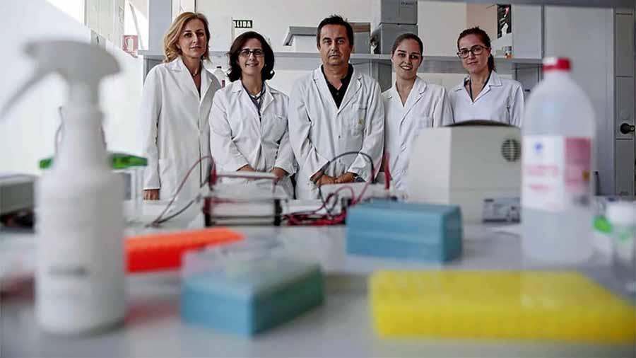 Salud Salud Piden firmas para la financiación de una investigación pionera contra el cáncer de la Universidad de Granada