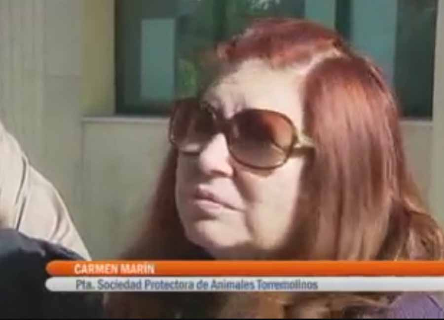 Torremolinos Torremolinos Sentencia ejemplar por maltrato animal: La ex presidenta de Parque Animal  de Torremolinos condenada a tres años y nueve meses de prisión