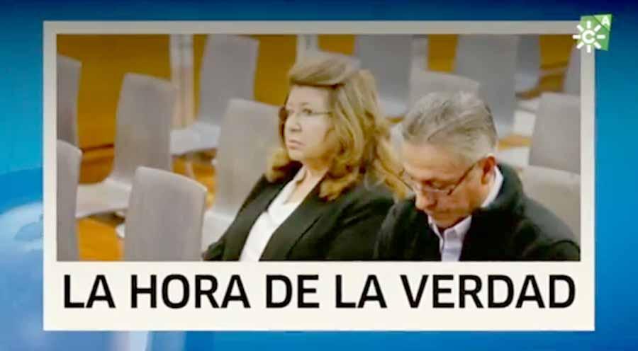 """Actualidad Noticias El PSOE propondrá en pleno una comisión de investigación para depurar responsabilidades en el polémico caso de """"Parque Animal"""""""