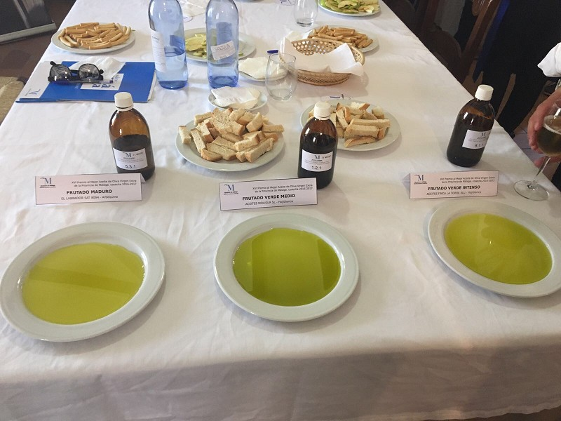 Restaurantes Restaurantes Las almazaras Aceites Finca La Torre, El Labrador S.A.T. y Aceites Molisur ganan el XVI Premio al mejor Aceite de Oliva Virgen Extra de la provincia de Málaga