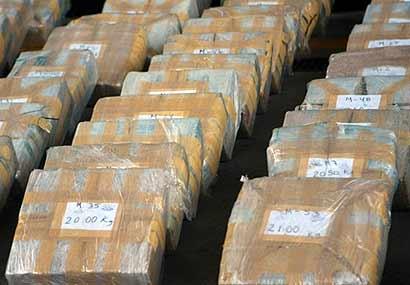 Actualidad Noticias Desarticulada una organización criminal internacional dedicada al tráfico de drogas desde Málaga a Europa