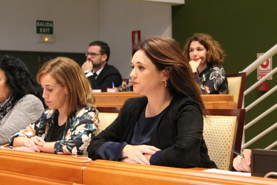 Torremolinos Torremolinos Aprobada la moción del PP para reclamar a la Junta de Andalucía más de 5 millones de euros a cuenta de la PATRICA