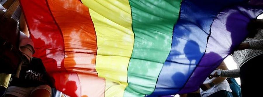 Gays Gays Familias: La libertad de elegir