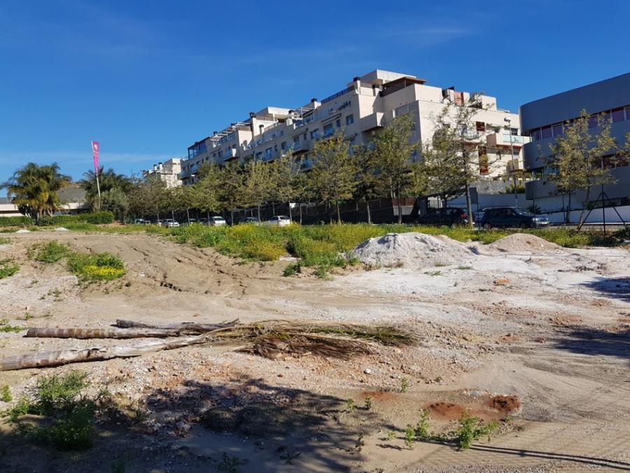 Torremolinos Torremolinos Erial en vez de huertos urbanos: El concejal César Carrasco (PSOE)  incumple los plazos