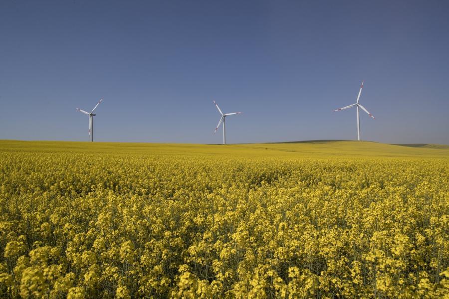 Ecologia Ecologia Informe para la Transición energética: entre elucubraciones e incompetencia