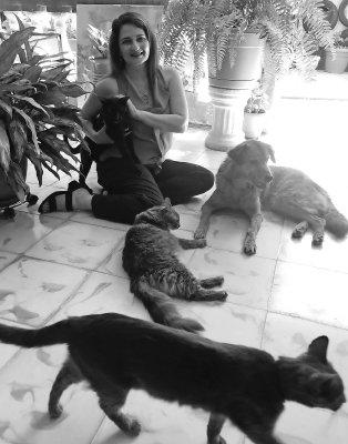 Animales Animales Los animales, maestros de vida