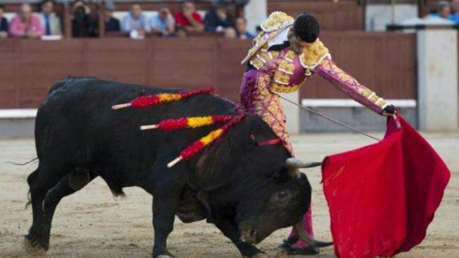 Animales Animales Los animalistas protestan en Madrid para acabar con las corridas de toros, los Sanfermines...