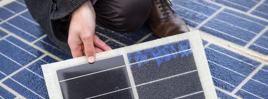 Ecologia Ecologia Suiza apuesta por las energías renovables para sustituir a la nuclear