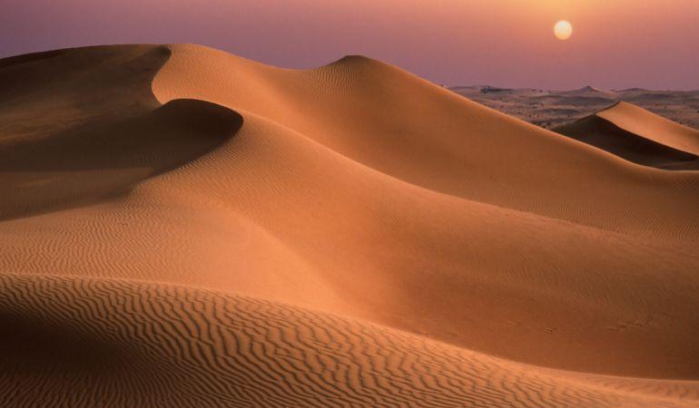 Ecologia Ecologia Científicos chinos cultivan la primera cepa de arroz en el desierto con agua del mar