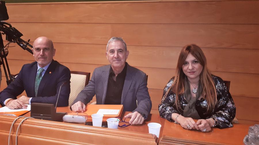 Torremolinos Torremolinos El Pleno aprueba la propuesta de Ciudadanos Torremolinos sobre la regulación del alquiler vacacional