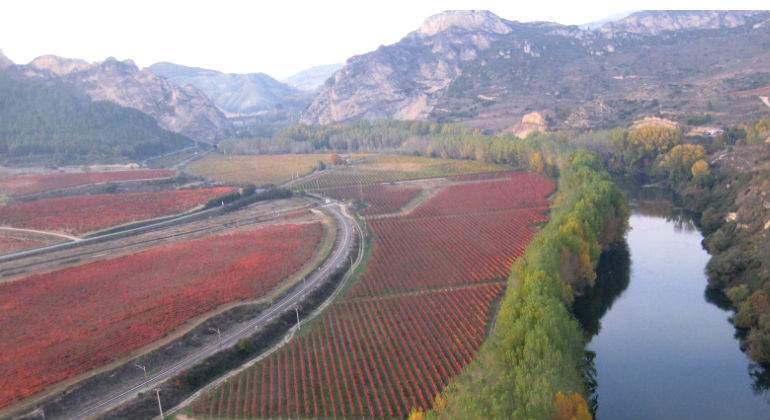 Ecologia Ecologia Rioja se blinda contra el cambio climático