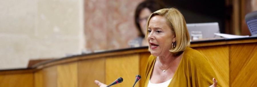 Benalmadena Benalmadena El PP exige explicaciones a la Junta por la falta de controles en la residencia de Benalmádena
