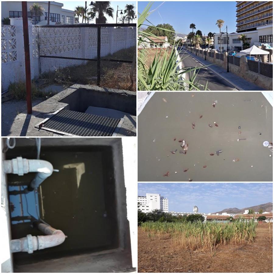 Torremolinos Torremolinos Pasividad del equipo de Ortiz ante la denuncia de Torrenatura de las aguas fecales estancadas del Hospital Marítimo, un problema de salud para residentes y turistas