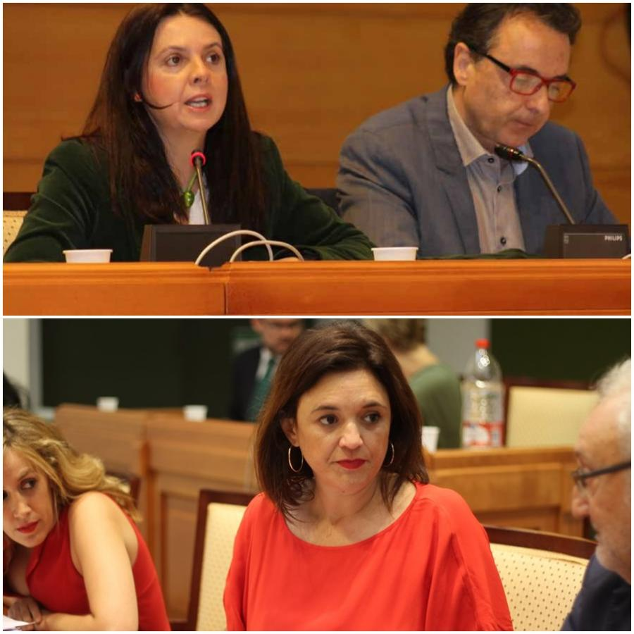 Torremolinos Torremolinos Este miércoles declararán Ortiz y Tocón ante el juez y el PP de Torremolinos acudirá como acusación popular