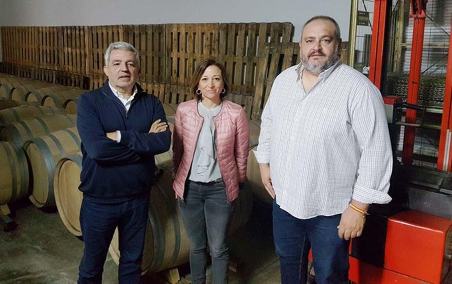 Málaga Málaga El PP impulsará la Ruta del Vino de Málaga y Ronda para estar en circuitos nacionales e internacionales