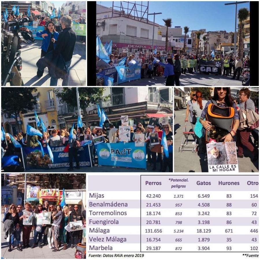 Torremolinos Torremolinos Activistas animalistas se manifestaron en Torremolinos para reclamar la puesta en marcha urgente del método CER de control de colonias de gatos ferales