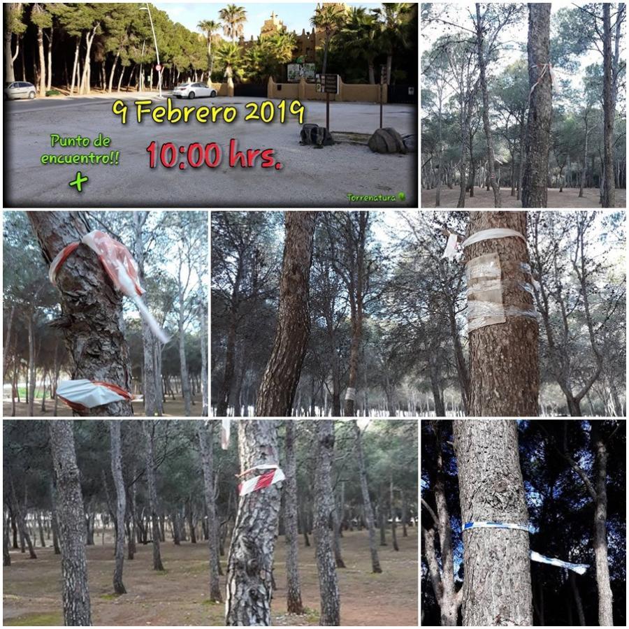 """Torremolinos Torremolinos Torrenatura convoca el """"Día del Plástico"""", una quedada medioambiental ciudadana en el pinar para adecentar el pulmón verde de Torremolinos mañana sábado"""