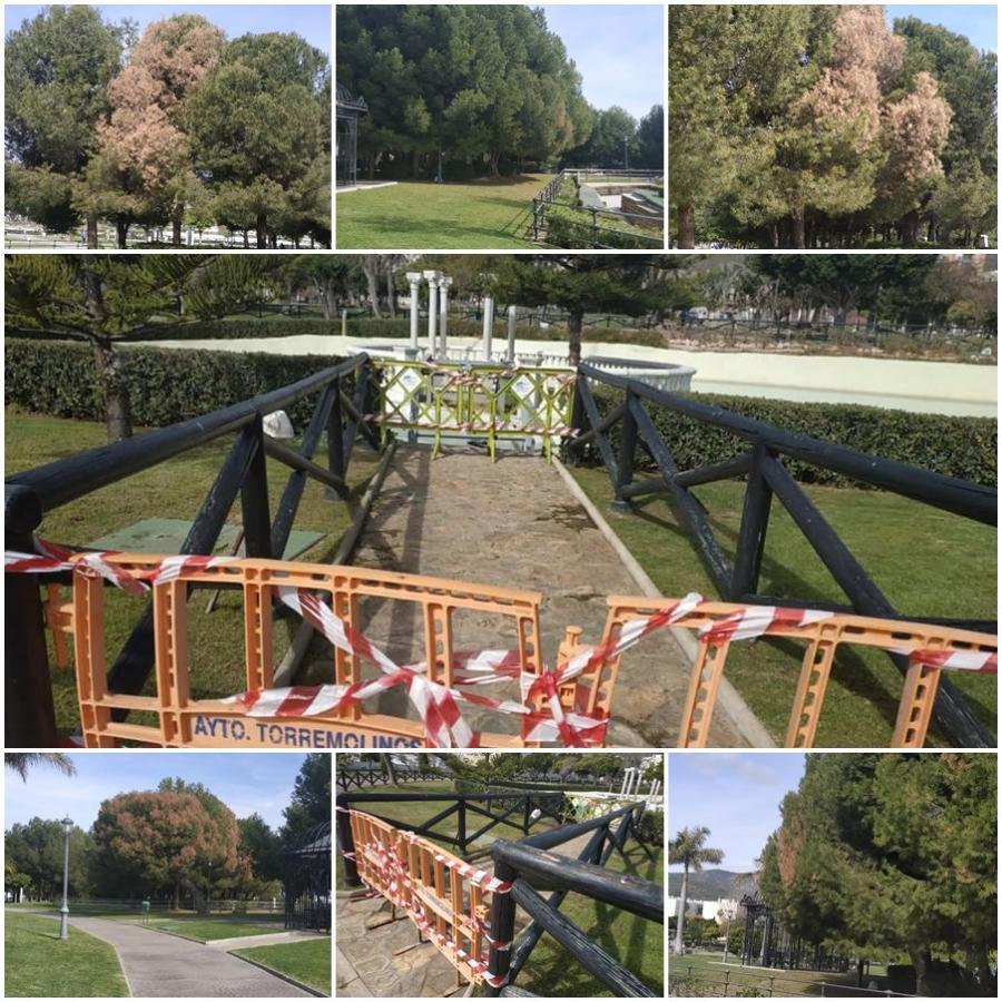 Torremolinos Torremolinos El PP preguntará en pleno por el estado de abandono de las instalaciones y de la arboleda del Parque de la Batería