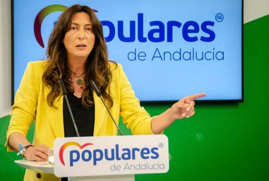 """Andalucía Andalucía El PPA lleva al Parlamento un Pacto por la Sanidad y pide a los grupos """"dejar al margen intereses electorales"""""""