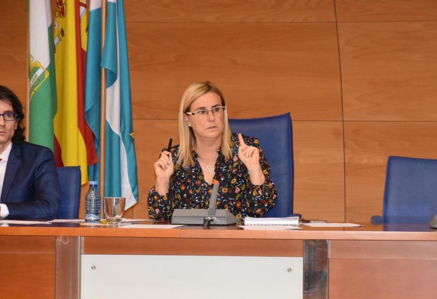 Ayuntamientos Ayuntamientos El Pleno de Fuengirola aprueba el Plan Municipal de Calidad Turística que marcará la estrategia de la ciudad hasta 2022