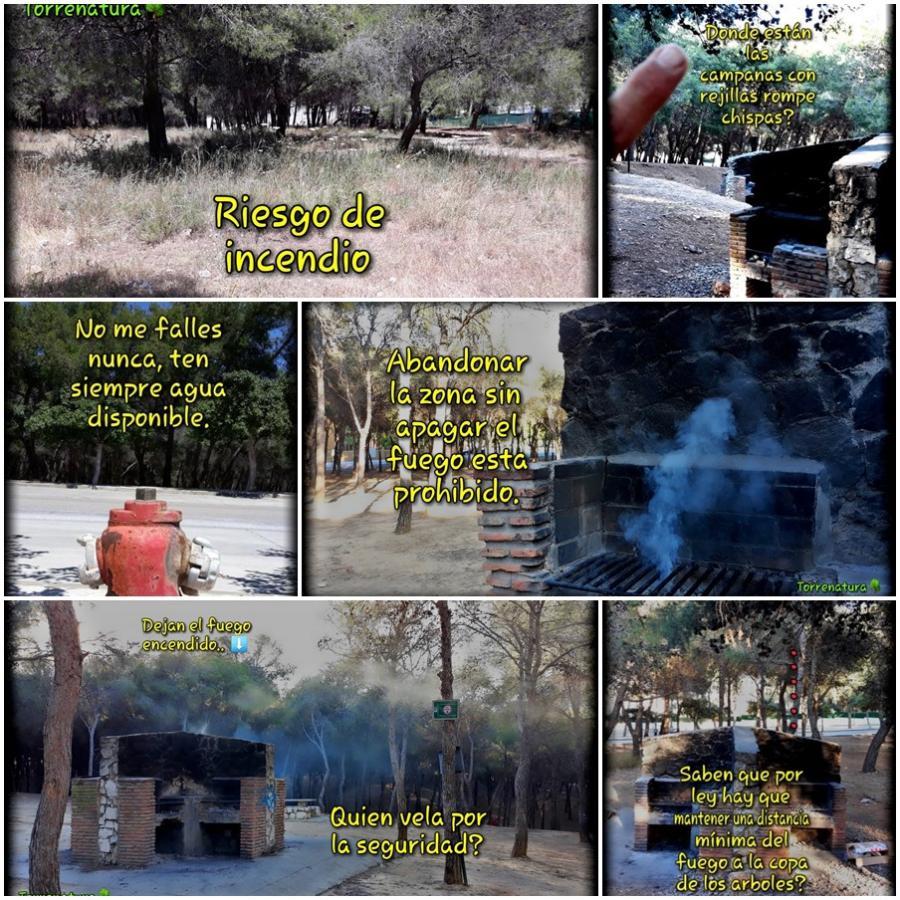 Torremolinos Torremolinos Torrenatura denuncia que las barbacoas del pinar de Torremolinos no cumplen con la normativa antiincendios y acusa a las autoridades de falta de información a los usuarios