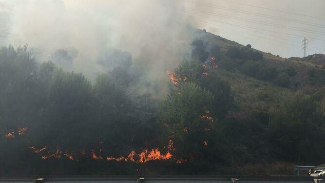Actualidad Noticias Controlado el incendio en el paraje El Higuerón de Benalmádena detectado ayer por la tarde