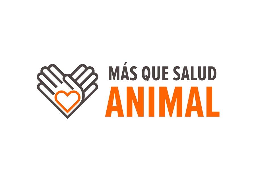 Animales Animales #MásQueSaludAnimal, el proyecto de social media de Zoetis España