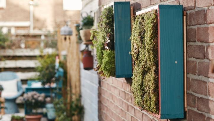 Actualidad Noticias Bosch Home&Garden nos ayuda a construir un jardín vertical para tu hogar