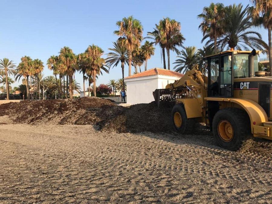 Ayuntamientos Ayuntamientos El Ayuntamiento retira en un mes más de 750.000 kilos de algas de la costa de Marbella