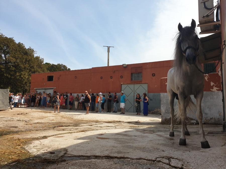 Málaga Málaga Una visita con resultado de muerte