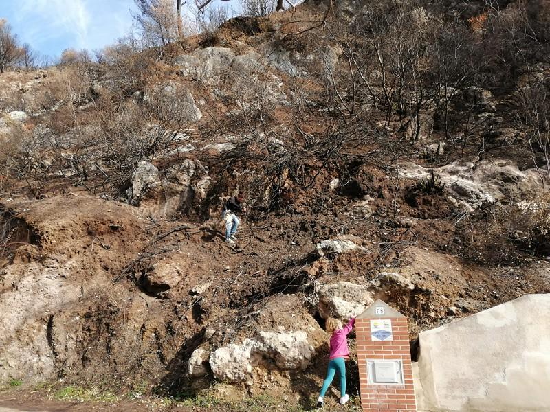 Ecologia Ecologia Lanzan más de 25.000 bombas de semillas a mano y con tirachinas en la zona afectada por el incendio en Casares