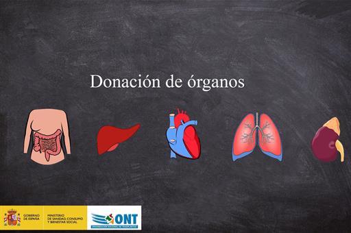 Salud Salud España alcanza un nuevo récord de actividad en donación de órganos, con la gestión de 19 donantes fallecidos en 24 horas