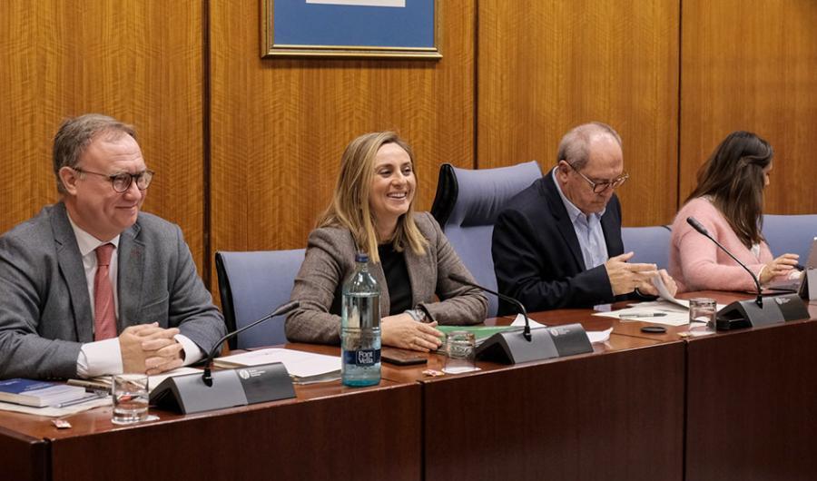 Andalucía Andalucía La Junta negocia con el CGPJ un nuevo convenio contra los desahucios en casos de emergencia social