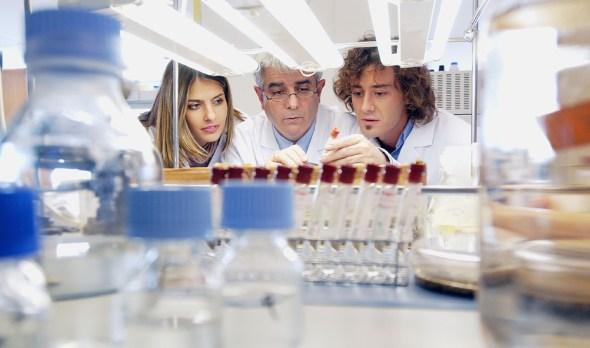Andalucía Andalucía Economía de la Junta moviliza más de 85 millones en ayudas para la investigación científica y empresarial