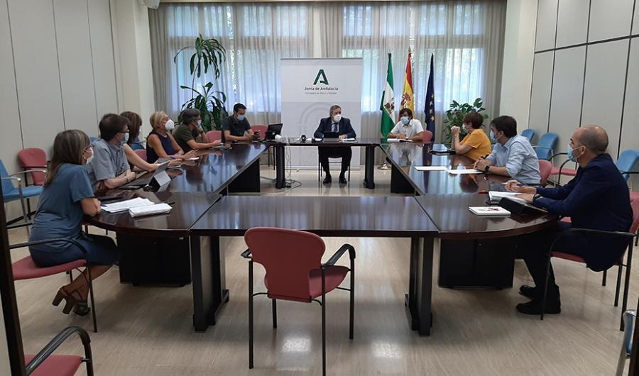 Salud Salud Oncólogos ponen las bases del Plan estratégico contra el cáncer de Andalucía 2021-2025