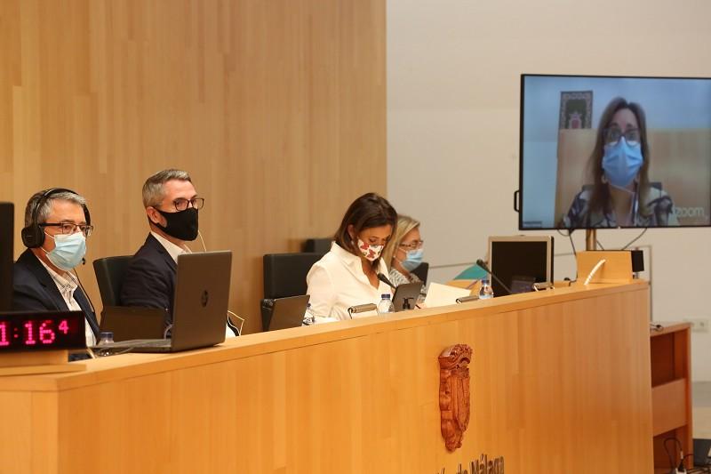 Málaga Málaga La Diputación de Málaga aprueba por unanimidad reclamar al Gobierno la ejecución del corredor ferroviario de la Costa del Sol con cargo al Plan de Recuperación de la Unión Europea