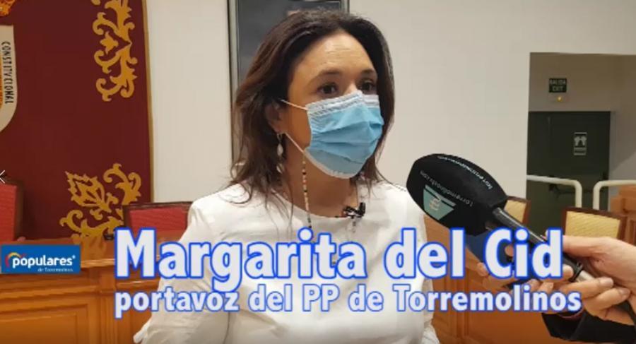 Torremolinos Torremolinos El PP critica que el apoyo de los socios de Gobierno del socialista José Ortiz hacen posible que salgan adelante las cuentas de los presupuestos de 2016 y 2017