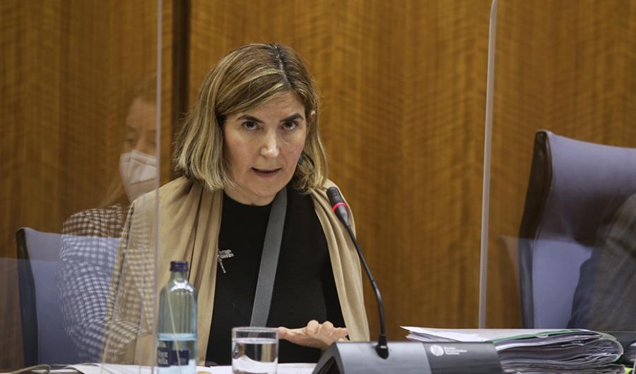 Andalucía Andalucía Empleo estudia aumentar las ayudas al alquiler para autónomos, que ya superan las 5.000 solicitudes