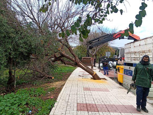Torremolinos Torremolinos Casi un centenar de operarios del Ayuntamiento trabajan para paliar los daños del temporal en Torremolinos