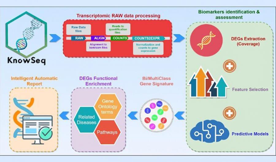 Salud Salud Inteligencia Artificial para predecir la gravedad de la Covid-19 y aplicar tratamientos personalizados