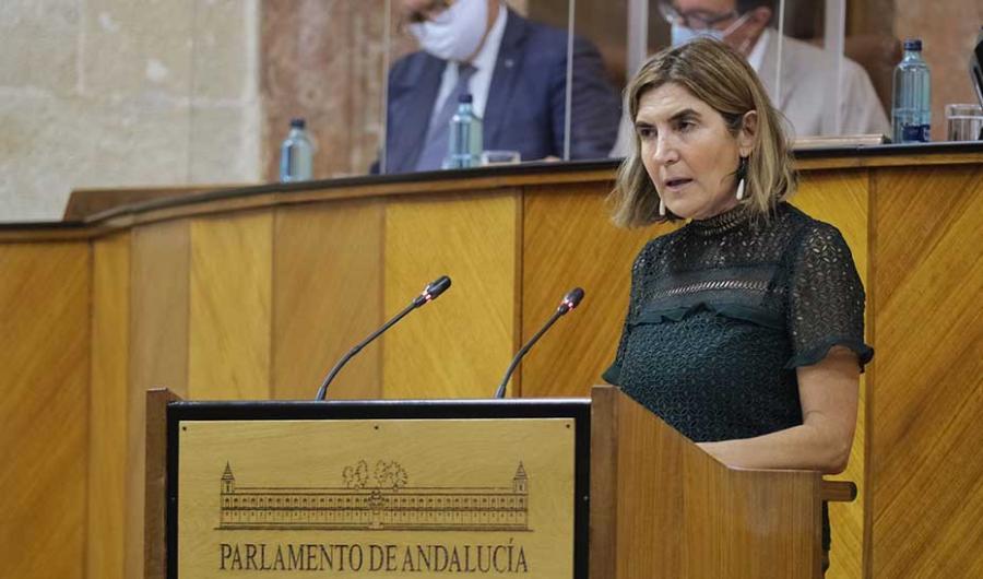Empleo Empleo El Parlamento andaluz convalida el decreto que generaliza las ayudas a empresas en ERTE para mantener el empleo